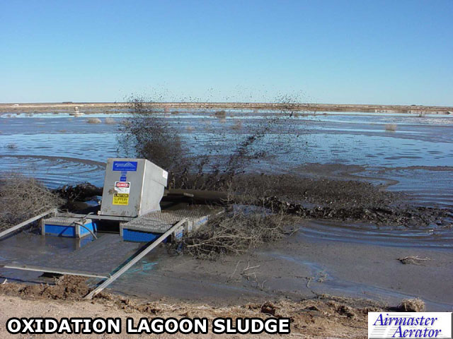 Oxidation Lagoon Sludge
